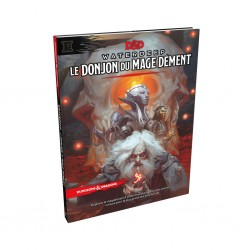 D&D 5 - waterdeep le donjon du mage dément
