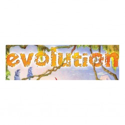 Evolution - extension