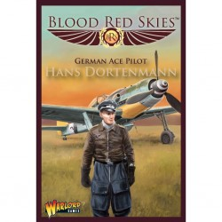 Blood red skies german ace pilot hans dortenmann